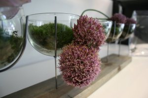 The Flower Lounge, Didsbury