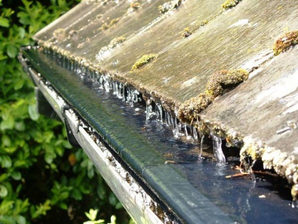 Didsbury Window Cleaning Services - Gutter Clearance