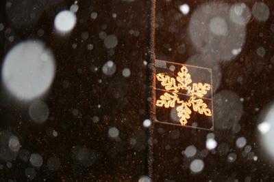 West Didsbury Christmas