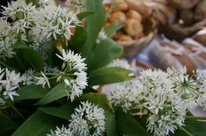 Wild garlic courtesy of Silver Apples - West Didsbury Market