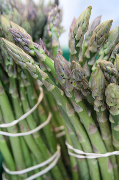 Beautiful fresh Cheshire asparagus