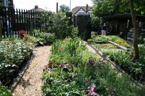 Bud Garden Centre, Burnage