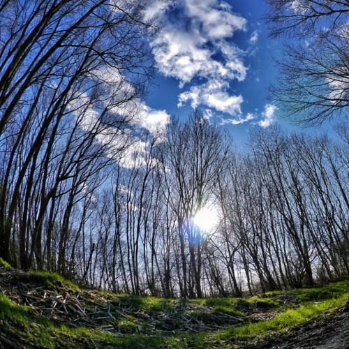 Fletcher Moss Park, Didsbury - taken by @vincesapplemac